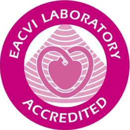 Herzultraschall Zertifikat